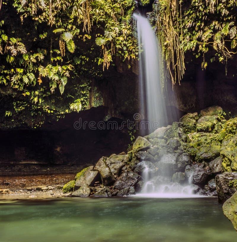 Eiland van Dominica waterval stock afbeeldingen