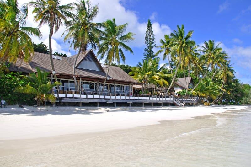 Eiland van Pijnbomen, Nieuw-Caledonië royalty-vrije stock fotografie