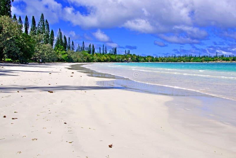 Eiland van Pijnbomen, Nieuw-Caledonië stock fotografie