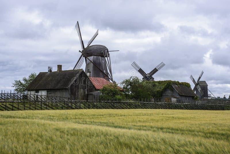 Eilandsaaremaa, Estland, Europa, de molens van angla stock afbeelding