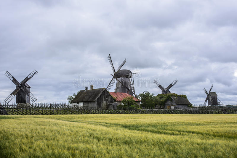 Eilandsaaremaa, Estland, Europa, de molens van angla stock afbeeldingen