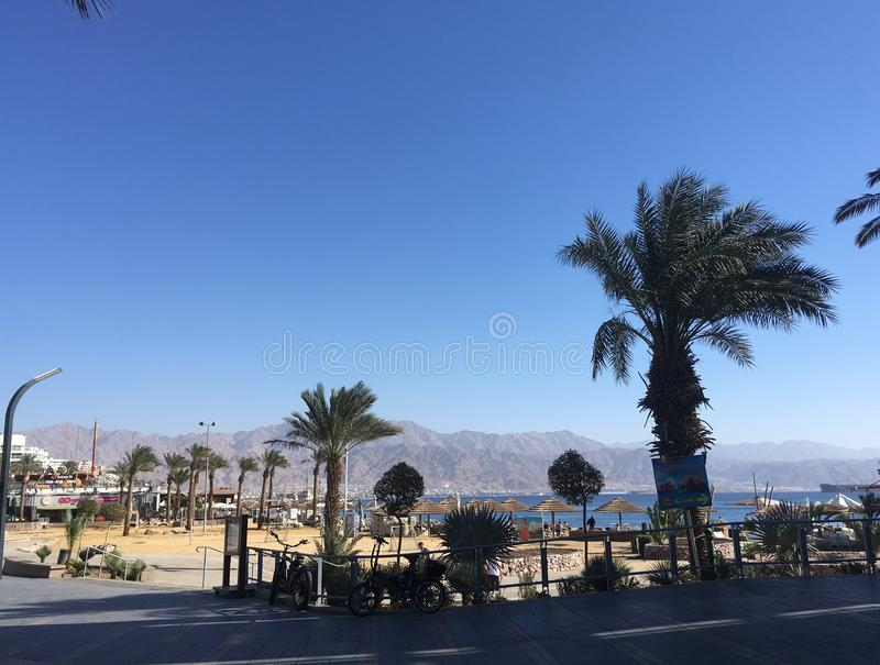 Eilat in december, Israel stock photo