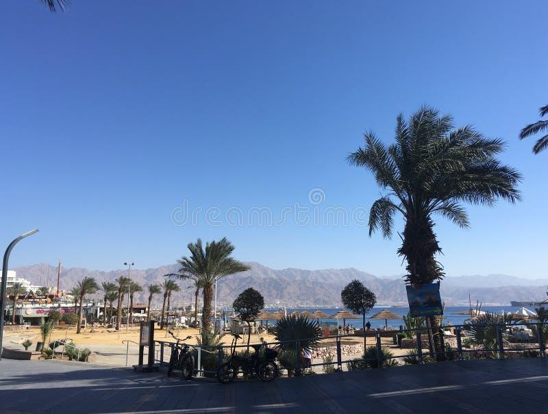 Eilat em dezembro, Israel foto de stock