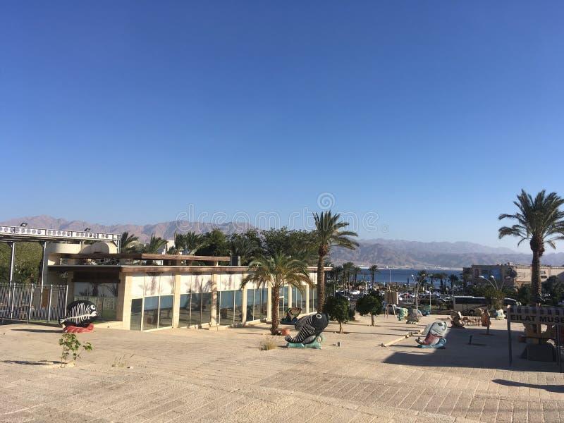 Eilat en décembre, l'Israël image libre de droits