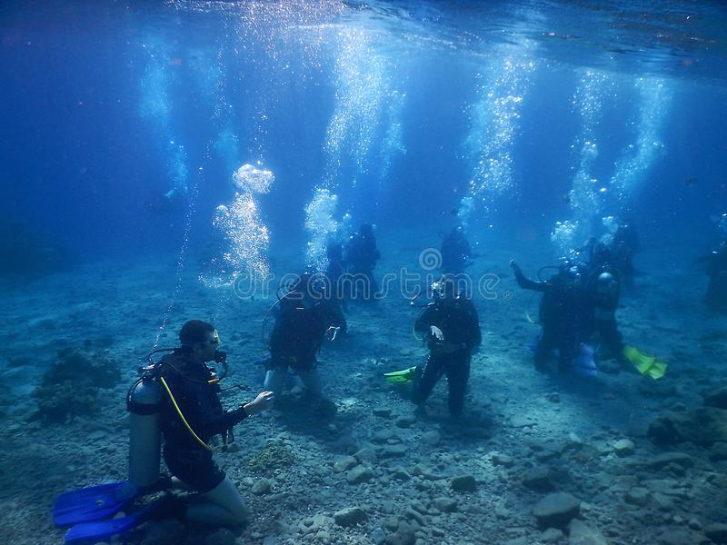 Floating divers in the Red Sea, gulf of Eilat, Israel. Eilat, Israel - october 17: floating divers in the gulf of Eilat, Red Sea on october 17, 2017 in Eilat royalty free stock photography