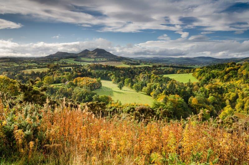 Eildon-Hügel im Herbst stockfotos