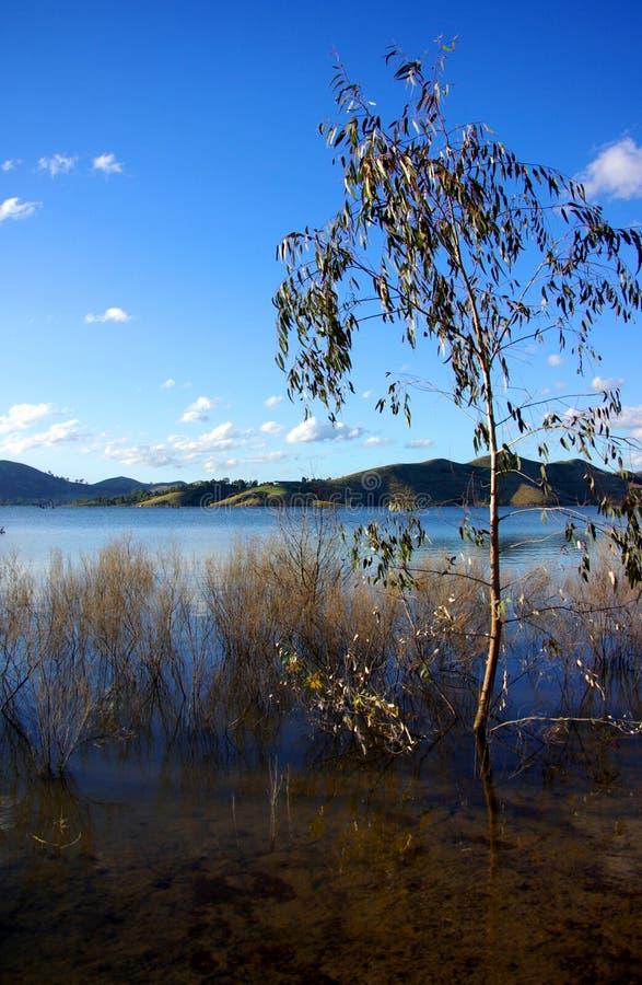 eildon homepoint湖 库存照片
