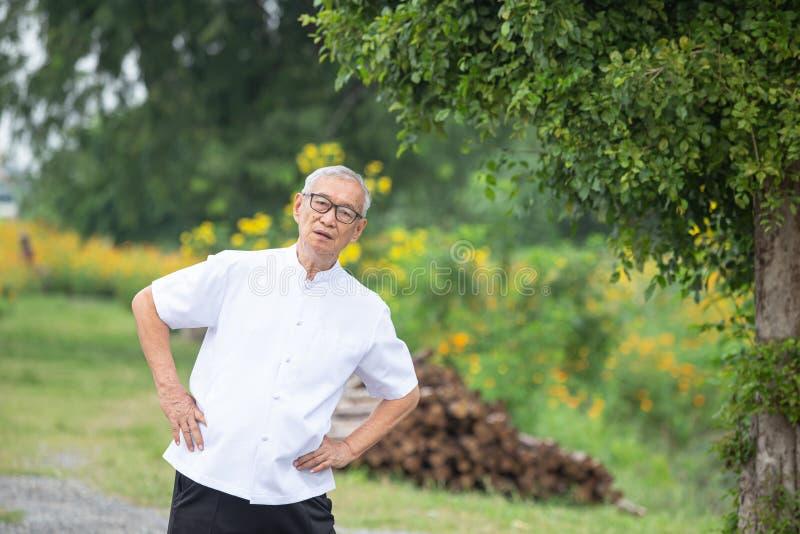 Ein älterer Mann, der morgens Übungen im Garten macht lizenzfreies stockbild