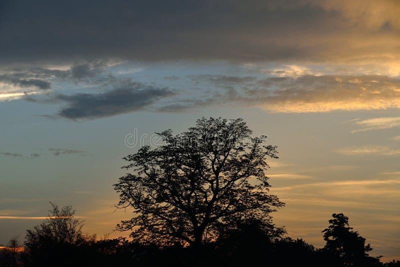 Ein Abendhimmel stockfoto