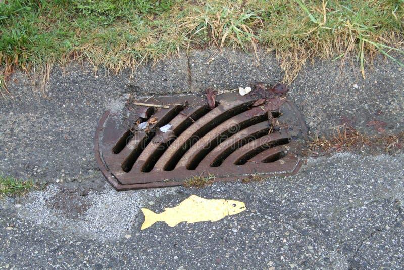 Ein Abwasserkanalgitter mit einem Lachs dazu gemalt stockfoto