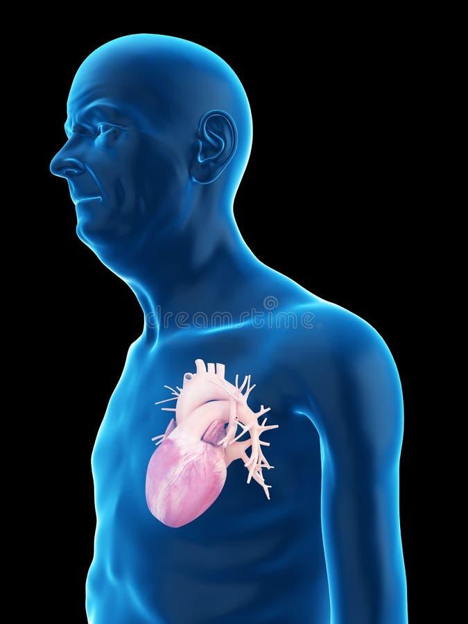Ein altes bemannt Herz stock abbildung