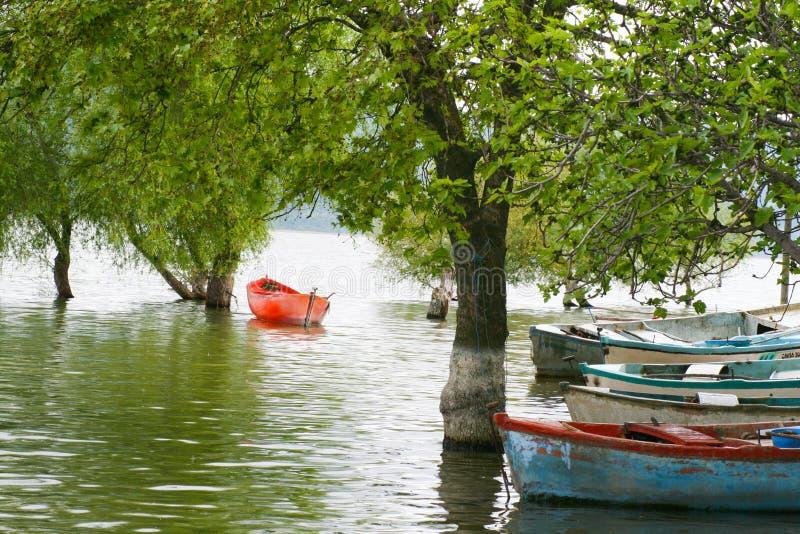 Ein altes Boot nahe dem Baum lizenzfreie stockfotografie