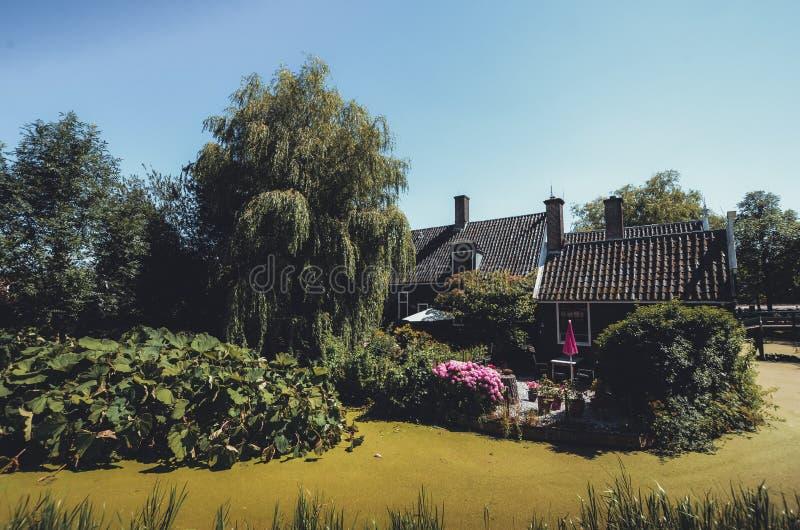 Ein altes Haus auf dem überwucherten grünen See lizenzfreie stockfotografie