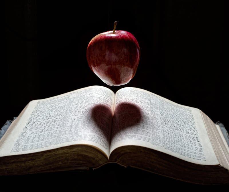 Ein Apfel mit Herzschatten lizenzfreies stockbild