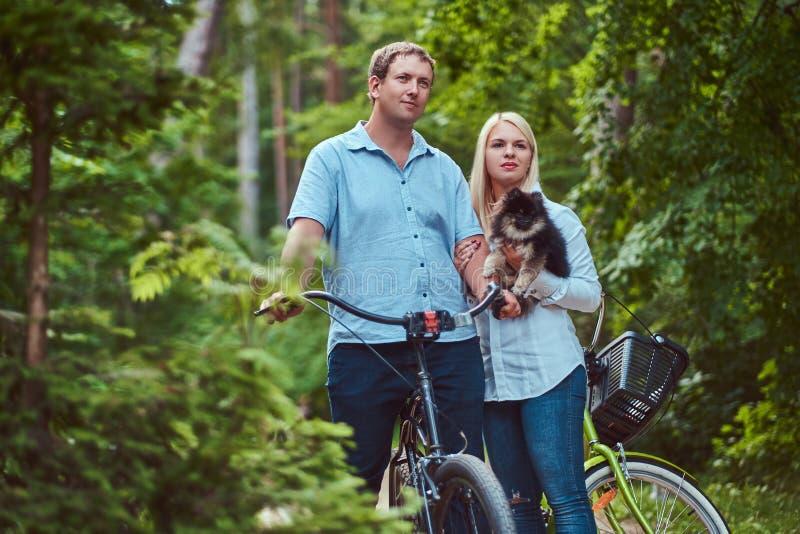 Ein attraktives Paar einer blonden Frau und des Mannes kleidete in der zufälligen Kleidung auf einer Fahrradfahrt mit ihrem nette stockfotos