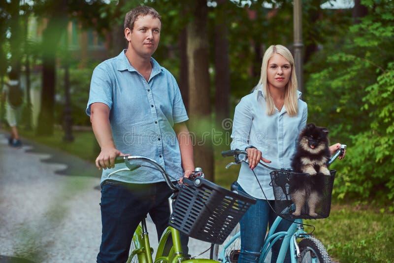 Ein attraktives Paar einer blonden Frau und des Mannes kleidete in der zufälligen Kleidung auf einer Fahrradfahrt mit ihrem nette stockfotografie
