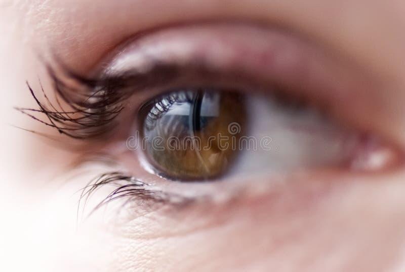 Ein Auge lizenzfreies stockfoto