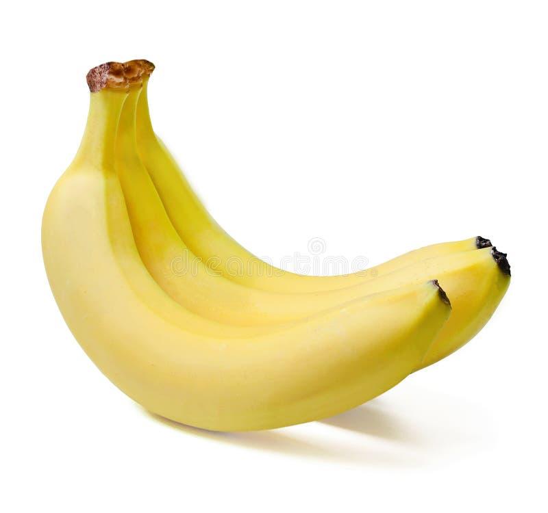 Ein Bündel von drei reifen Bananen Nahaufnahme Weiß lokalisierter Hintergrund lizenzfreie stockfotografie