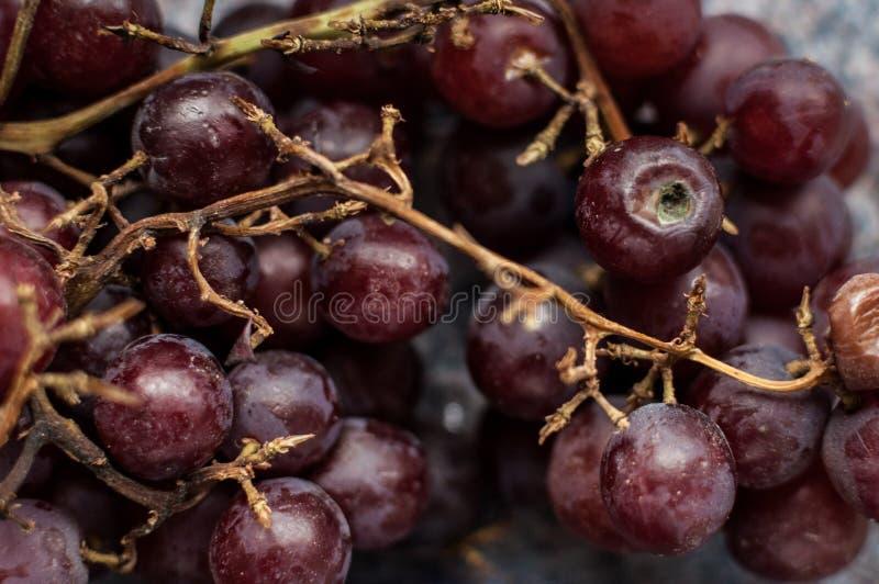 Ein Bündel alte Trauben, etwas Gehen moderig stockfotos