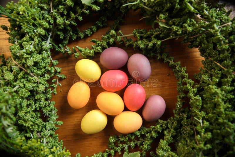 Ein Bündel farbige Eier auf dem Tisch legend umgeben durch eine Grünpflanze lizenzfreies stockfoto
