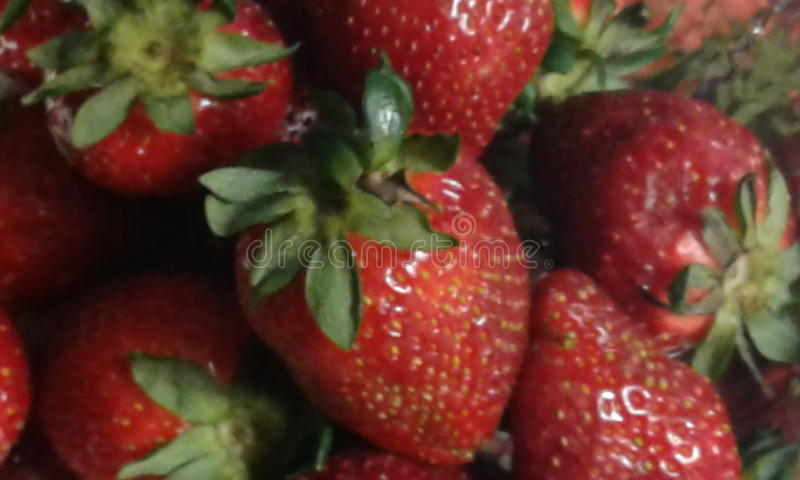 Ein Bündel frische Erdbeeren stockbild