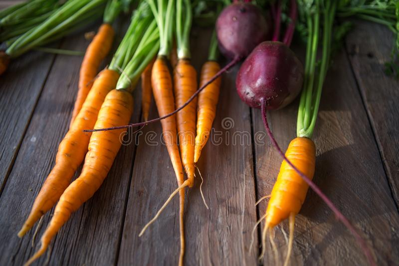Ein Bündel Karotten und Rote-Bete-Wurzeln Frische Karotten, Rote-Bete-Wurzeln Haufen mit grünen Stämmen Rohe Karotten und Rote-Be stockbilder