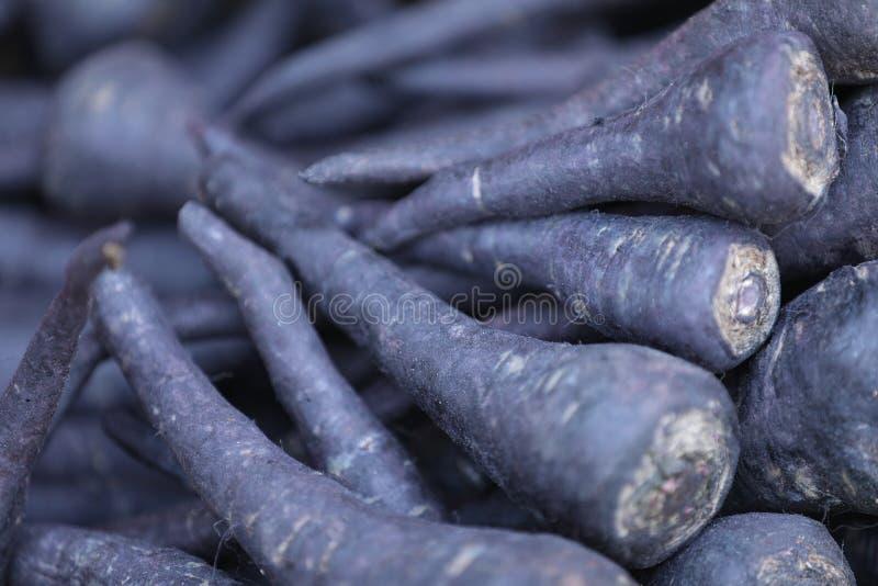 Ein Bündel saftige schwarze Karotten stockfotos