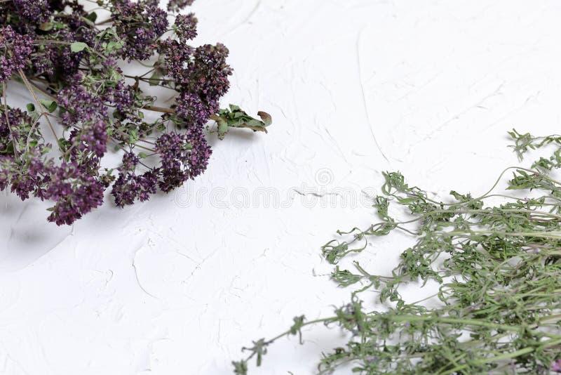 Ein B?ndel getrocknetes Gras Thymiangarten Vor dem hintergrund der weißen Wand mit dekorativem Gips lizenzfreies stockbild