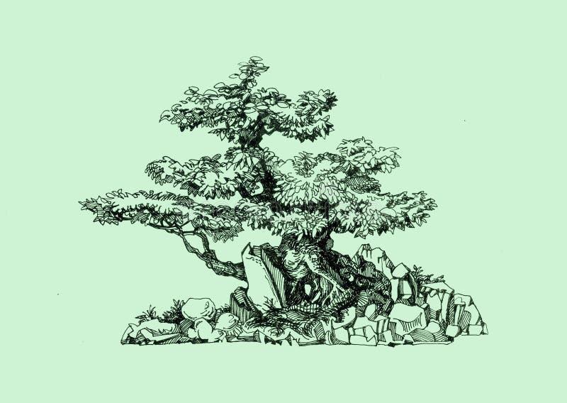 Ein Baum im Stil eines Bonsais Alter gebogener Stamm Natürlicher vektoraufbau stockbild