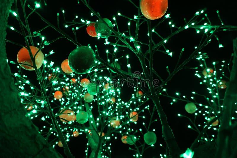 Ein Baum mit Lampen stockfotografie