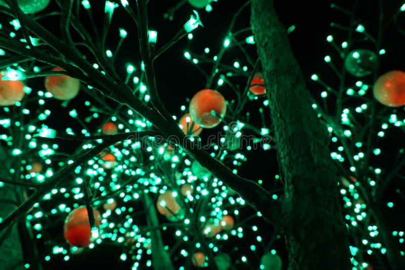 Ein Baum mit Lampen lizenzfreie stockbilder