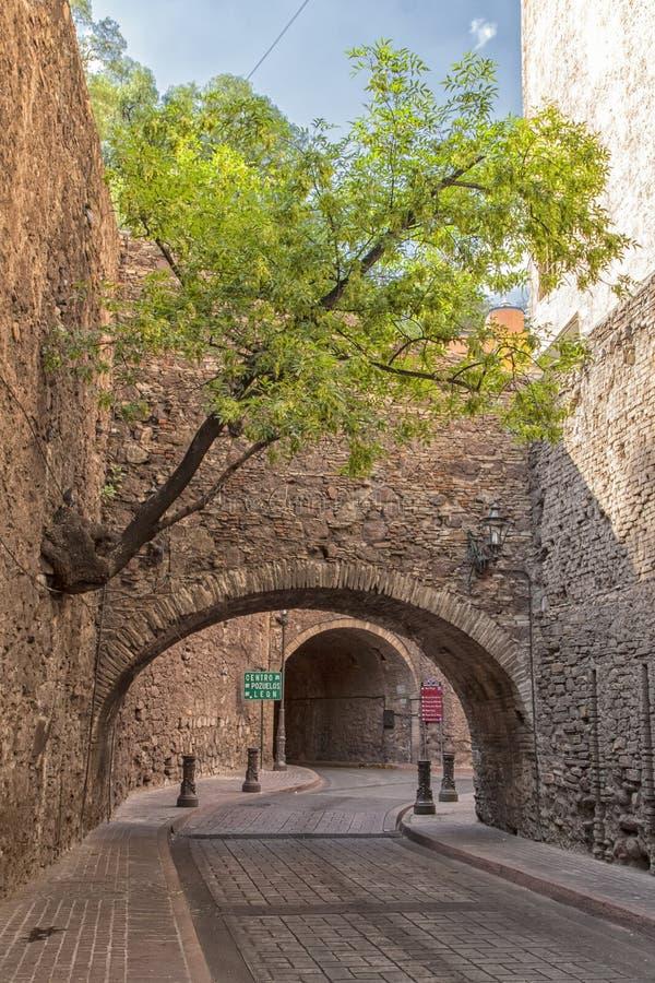 Ein Baum und ein Durchgang in Guanajuato, Mexiko stockfotografie
