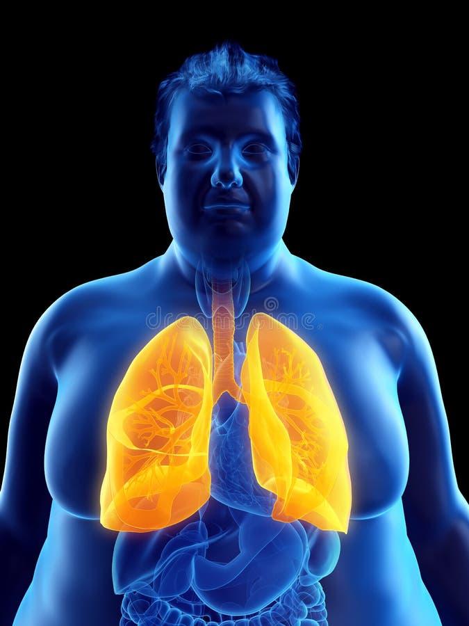 Ein beleibtes bemannt Lungen lizenzfreie abbildung