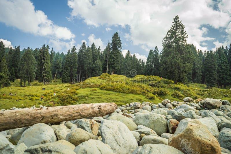 Ein beträchtliches Feld von runden Flusssteinen eines Flussbetts in einer Landschaft in Doodhpathri, Kaschmir Ein Klotz von hölze lizenzfreie stockbilder
