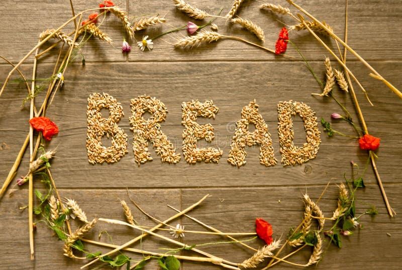 """Ein Bild, das mit Getreide in der Form eines Kragens für Danksagung nach innen gelegt wird, ist das Wort """"das entworfene Brot"""" lizenzfreies stockbild"""