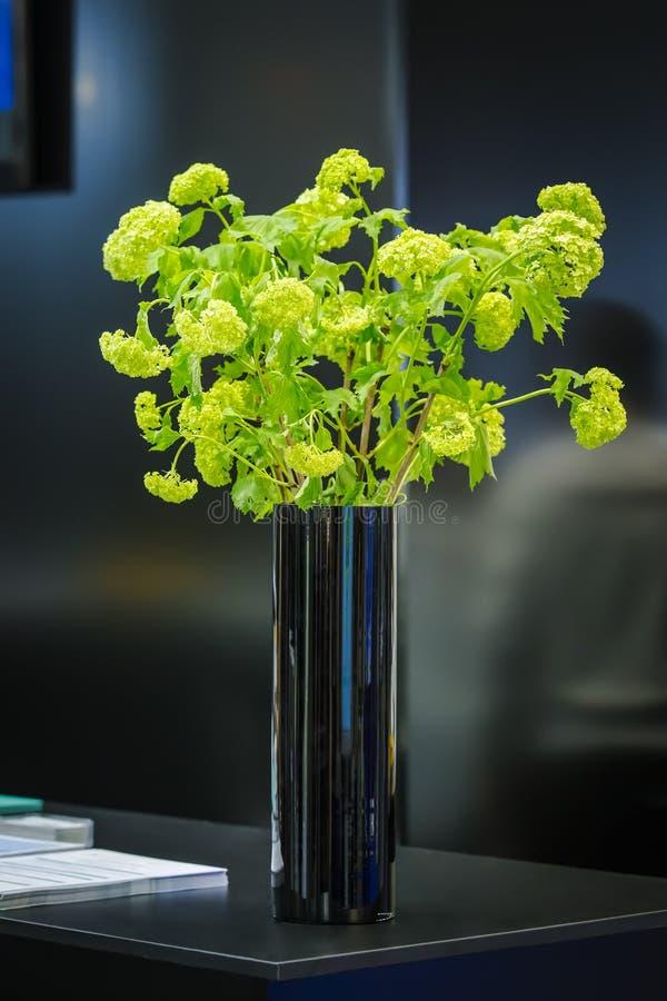 Ein blühender grüner Blumenstrauß in einem Vase auf einer Tabelle Blumen auf einem schwarzen Hintergrund im Büro stockfoto