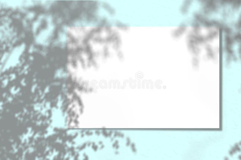 Ein Blatt Papier auf einem blauen Hintergrund Plan mit der Auferlegung von Betriebsschatten Natürliches Licht wirft einen Schatte stockbild