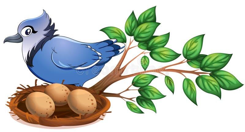 Ein blauer Vogel an der Niederlassung eines Baums mit einem Nest lizenzfreie abbildung