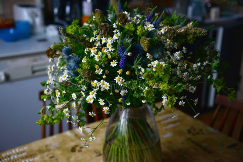 Ein Blumenstrauß der Feldkamille lizenzfreies stockbild