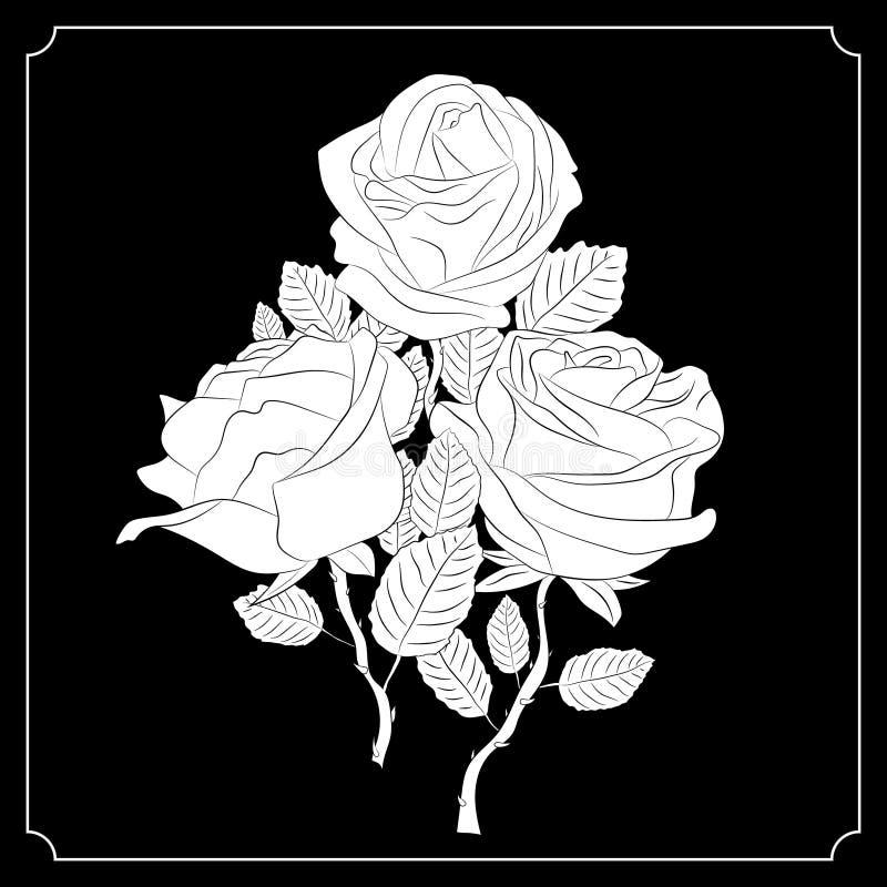 Ein Blumenstrauß von drei Rosen Schwarzweiss-Zeichnung kalligraphie tätowierung vektor abbildung