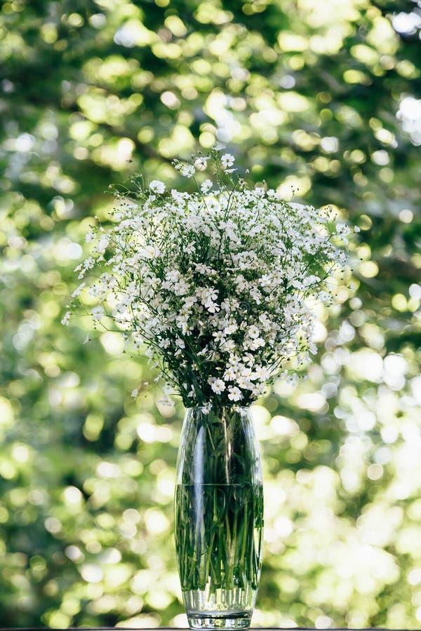 Ein Blumenstrauß von frischen kleinen weißen Blumen von Gypsophila in einem Glasvase draußen auf einem Grün und gelben einem boke lizenzfreies stockfoto