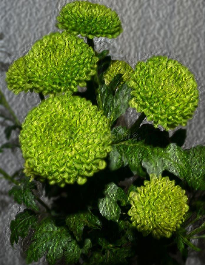 Ein Blumenstrauß von gelbgrünen Chrysanthemen stockfotografie