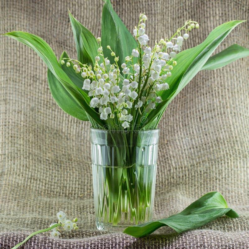 Ein Blumenstrauß von Maiglöckchen in einem Glasvase lizenzfreies stockbild
