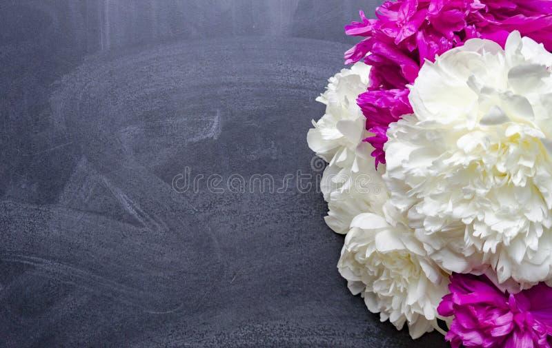 Ein Blumenstrauß von Rosa- und weißenpfingstrosenlügen auf einer Kreideschulbehörde lizenzfreie stockfotos