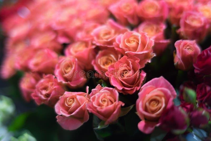 Ein Blumenstrauß von Rosen im Fokus der Porträtlinse im glättenden romantischen Licht lizenzfreie stockfotografie