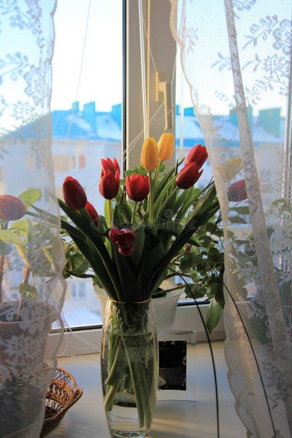 Ein Blumenstrauß von Tulpen in einem Glasvase stockfotografie