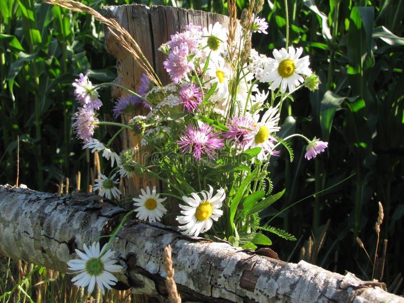 Ein Blumenstrauß von Wildflowers auf einem ländlichen Zaun lizenzfreies stockbild