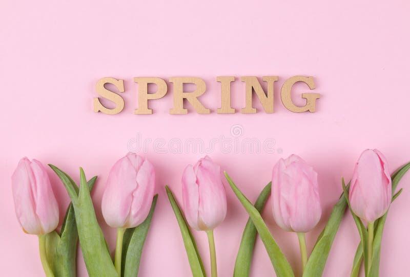 Ein Blumenstrauß von schönen rosa Tulpenblumen auf einem modischen rosa Hintergrund Frühling feiertage Textfrühling von den hölze lizenzfreie stockfotografie