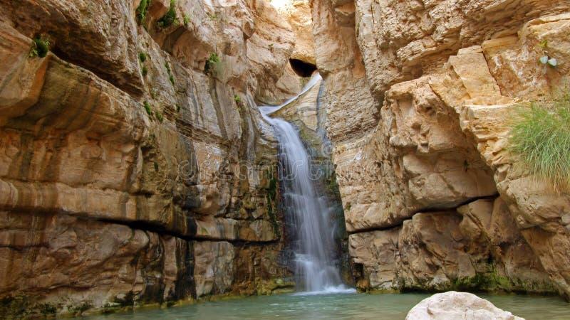 Ein Bokek Waterfall royalty free stock image