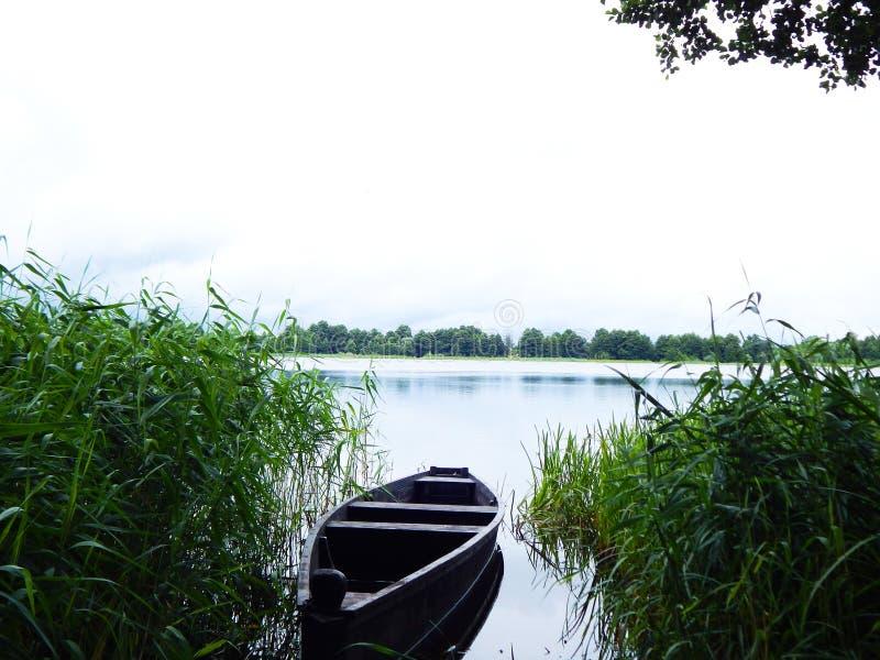 Ein Boot auf dem See zwischen dem Gras stockbild